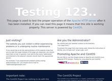 Hantelbank – alles Wissenswertes über Hantelbänke