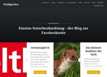 Waldgucker – Passion Naturbeobachtung