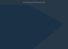 Schwingschleifer Test
