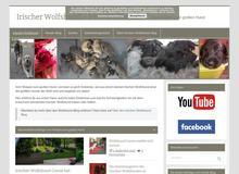 Irischer Wolfshund blog Vom kleinem Welpen zum riesen Hund