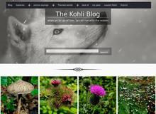 Der Kohli Blog