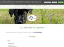Bandscheibenvorfall bei Hunden – Was kann ich tun?