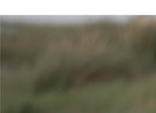 Herzenswege Coaching – Blog und Podcast
