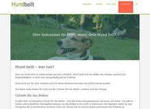 Abartig oder der neue Trend? Hundefutter aus Insekten!